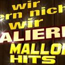 MallorcaHitsTV – die Vorbereitungen