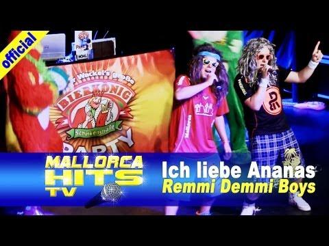 Remmi Demmi Boys – Ich liebe Ananas