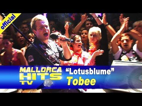 Tobee – Lotusblume