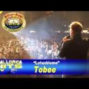 Tobee, Lotusblume – Schlager Stadel XXL