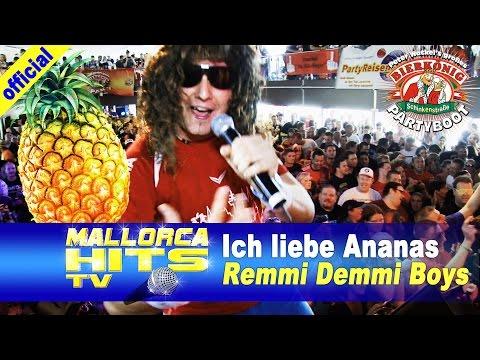 Remmi Demmi Boys – Ich liebe Ananas – Partyboot 2014