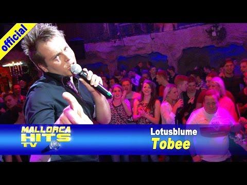 Tobee – Lotusblume – Palazzo